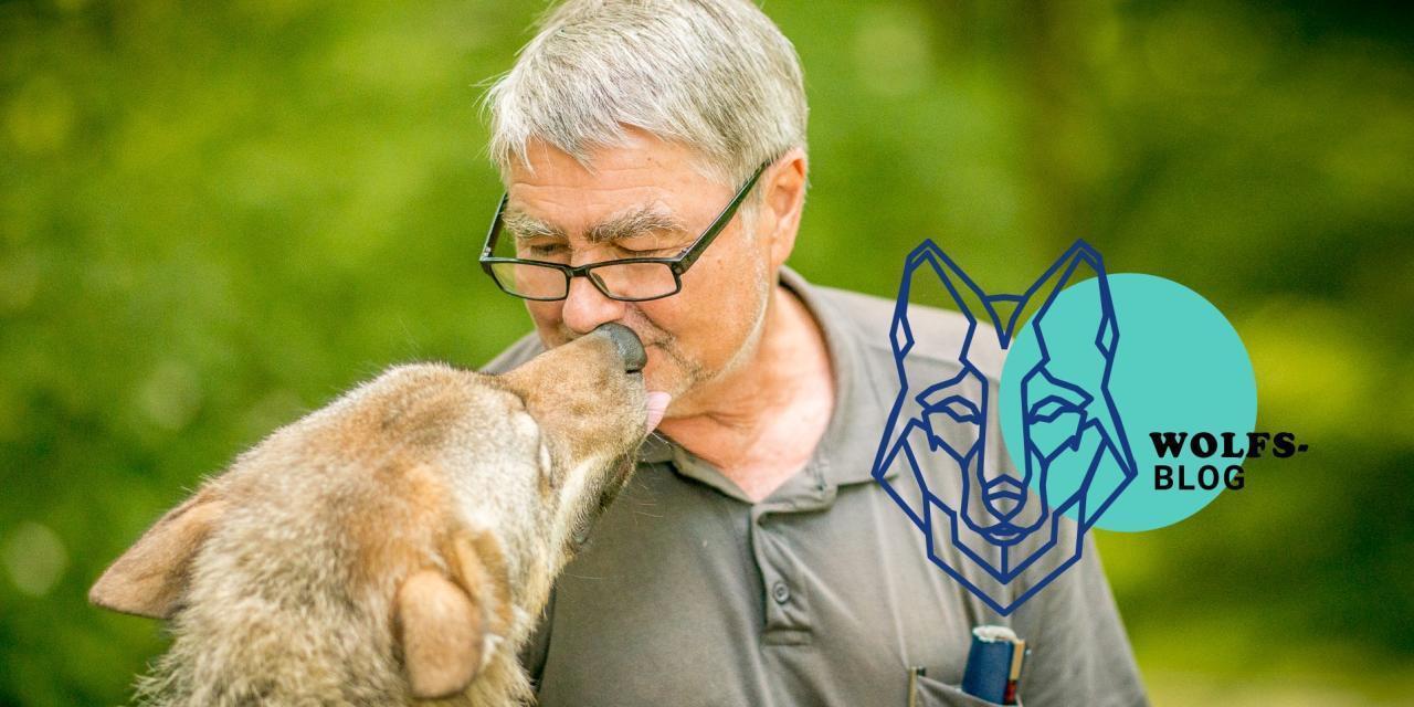 Wolfsblog von Kurt Kotrschal jede Woche neu