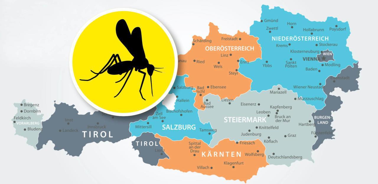 Gelsenplage in Österreich endlich überstanden