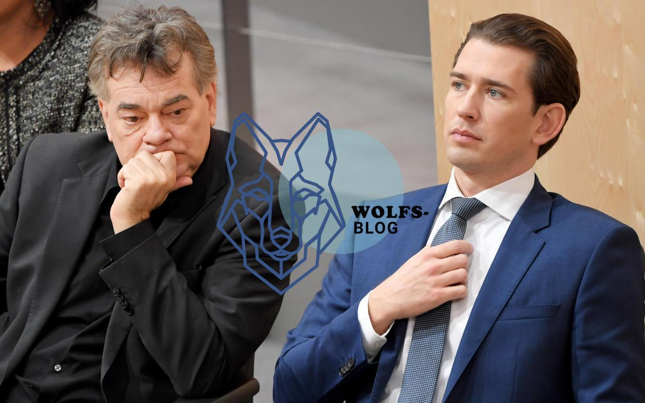 TürkisGrün schweigt zu Wolf und Wilderei im Land