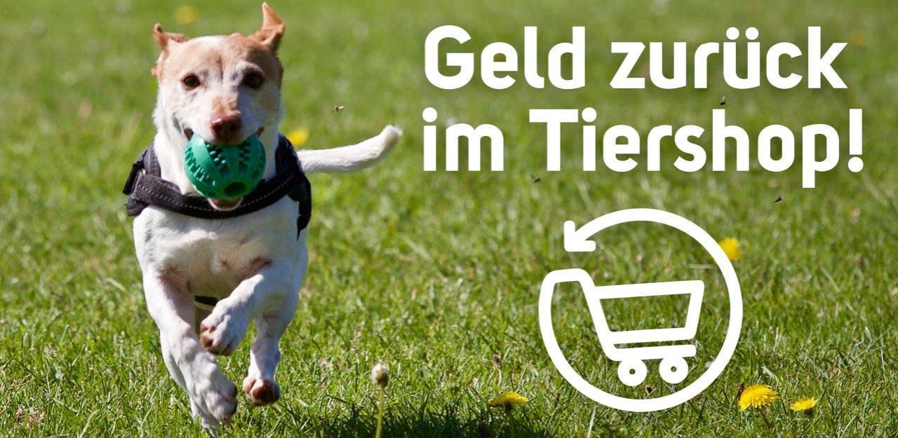 Rabatte und bis zu 9  Geld zurück auf Ihren Einkauf im Tiershop