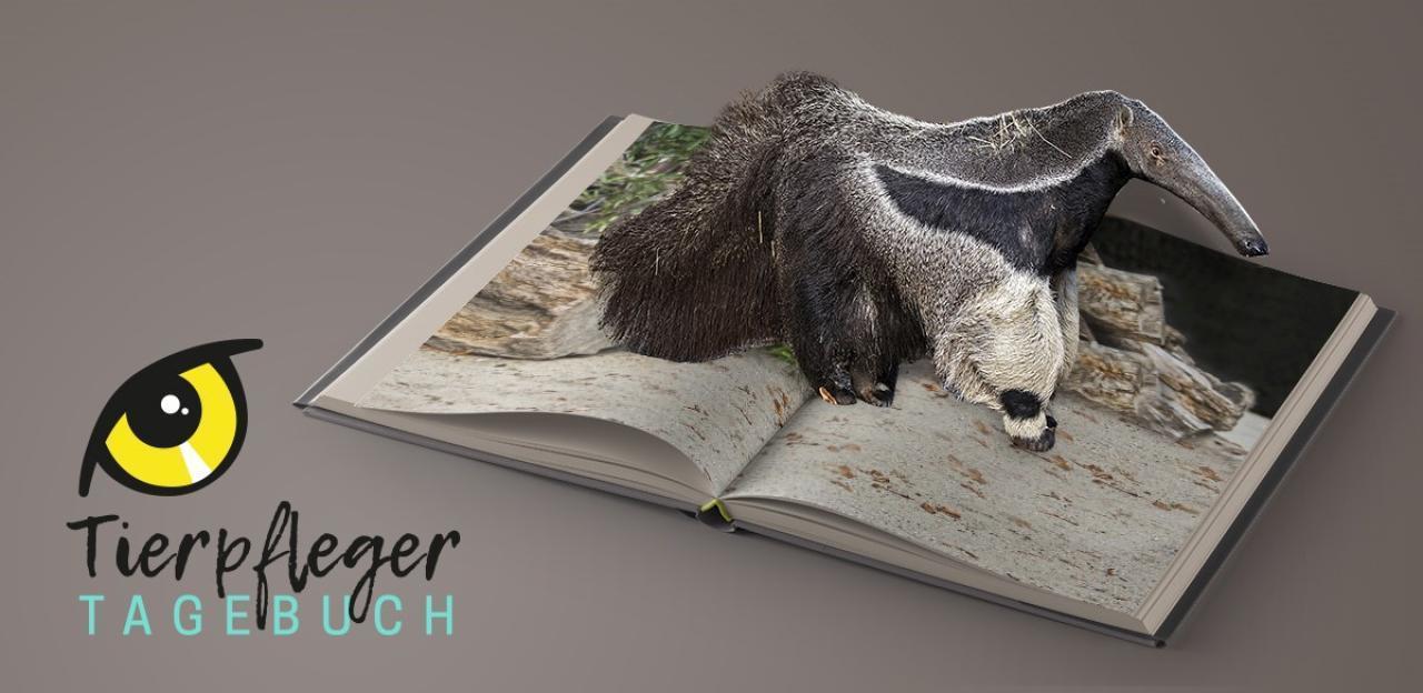 TierpflegerTagebuch  jeden Freitag neu
